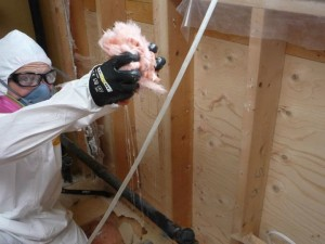 Technician Removing Damaged Insulation In An Attic